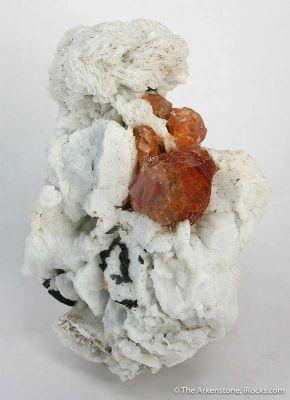 Spessartine Garnet in Albite