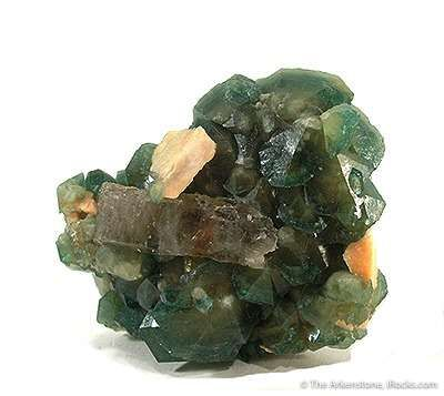 Carbonate-Fluorapatite With Quartz
