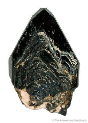 Manganotantalite (Twinned)
