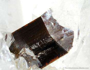 Quartz Enclosing Brookite