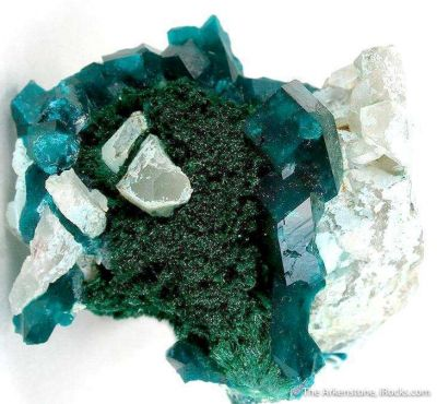 Dioptase on Malachite