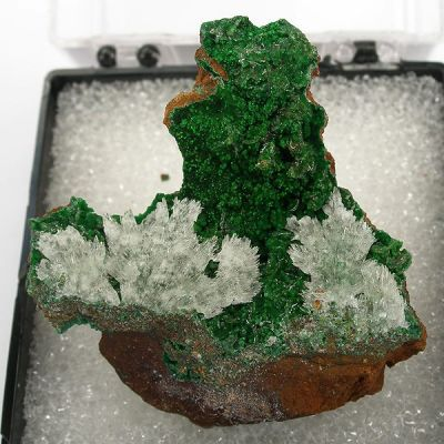 Austinite, Conichalcite