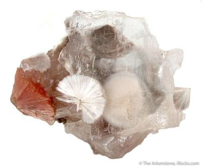Xonotlite in Selenite With Inesite