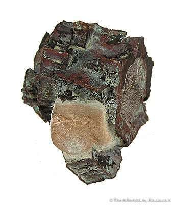 Copper Pseudomorph After Aragonite