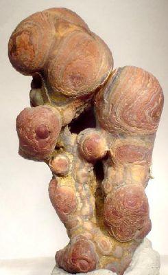 Cassiterite (Var: Wood Tin)