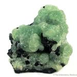Babingtonite on Prehnite