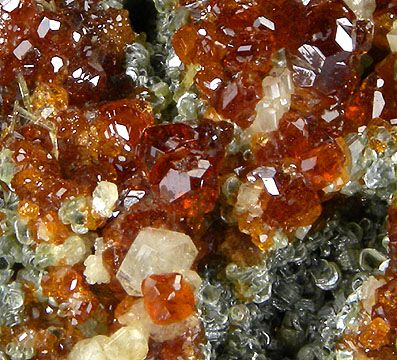 Grossular (Var: Hessonite), Clinochlore, Albite, Diopside