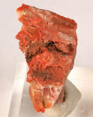 Groutite, Chalcedony (Var: Petrified Wood)
