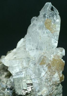 Gypsum (Var: Selenite)