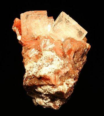 Inesite, Apophyllite, Natrolite, Datolite