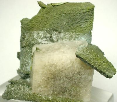 Mottramite, Wulfenite