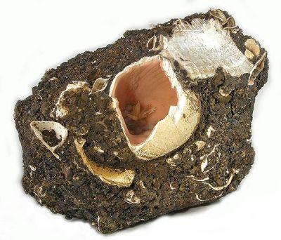 Rhodochrosite, Calcite