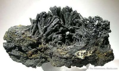 Galena After Pyromorphite