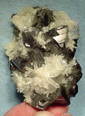 Sphalerite (Var: Marmatite), Quartz