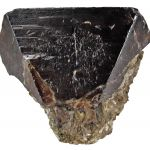 Cassiterite (Huge Crystal For Locality)