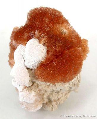 Orange Prehnite With Xonotlite