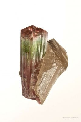Tourmaline on Smoky Quartz