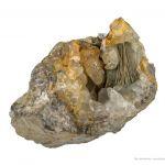 Millerite in Calcite Geode