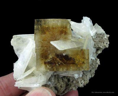 Fluorite and Celestine