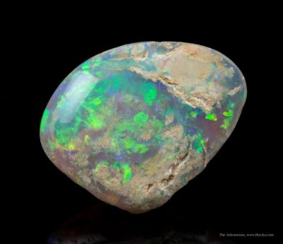 Opal Replacement Of Clam Fossil