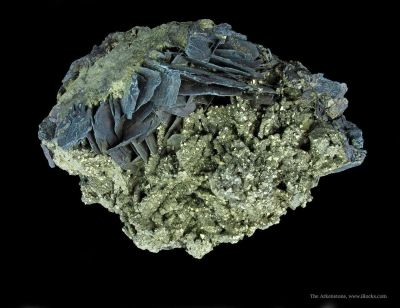 Covellite and Pyrite