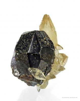 Calcite on Sphalerite (Illustrated)