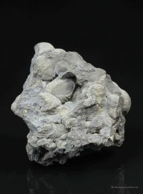 Botryoidal Native Arsenic and Dyscrasite With Lollingite Druse
