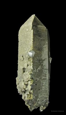 Fluorapatite on Smoky Quartz With Arsenopyrite, Calcite, Siderite