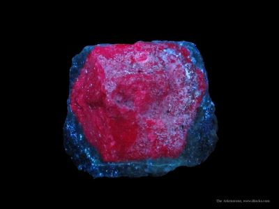 Corundum Var. Ruby (Fluorescent) in Zoisite