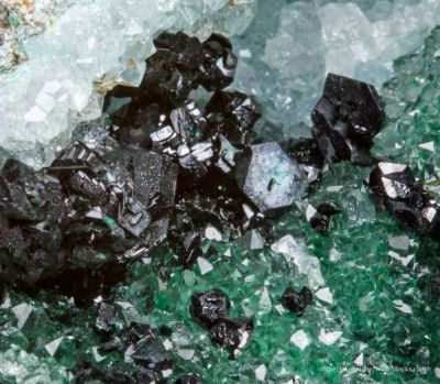 Clinoatacamite on Quartz