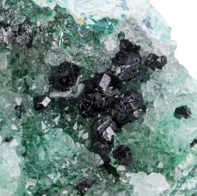 Atacamite & Clinoatacamite on Quartz