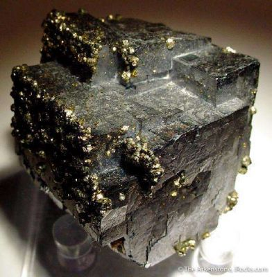 Galena With Oriented Chalcopyrite (Floater!)