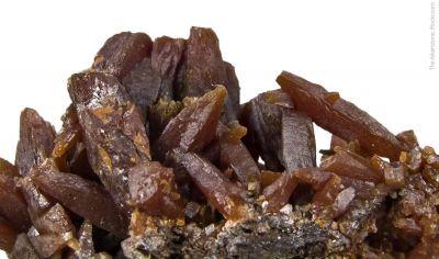 Stolzite (elongated crystals)