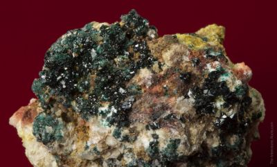Herbertsmithite with Paratacamite