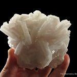 Manganoan Calcite (fluorescent)