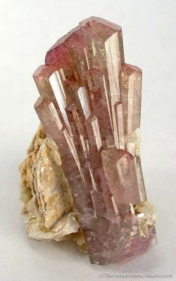 Tourmaline Var. Elbaite on Muscovite