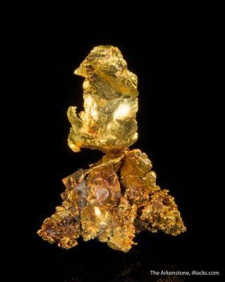 Leaf Gold on Gold