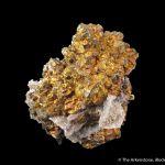 Chalcopyrite and Quartz