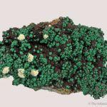 Malachite ps. Cuprite on Copper