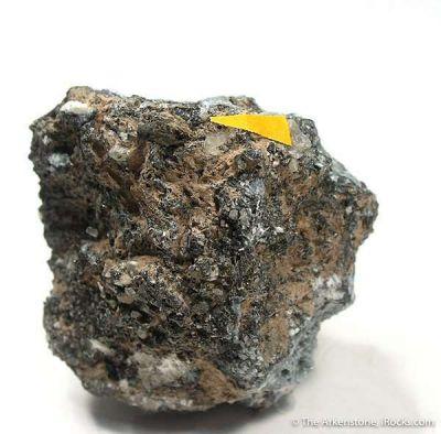 Rasvumite (Huge Xl)
