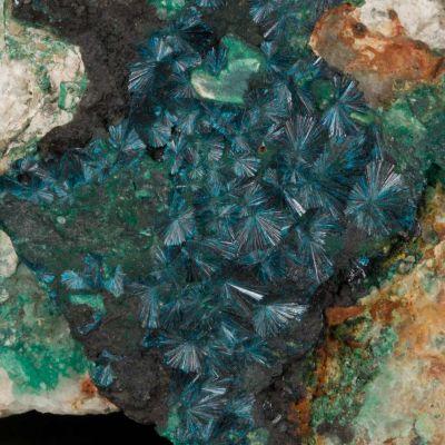 Clinoclase (Ex. Neeld circa 1800)