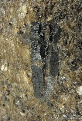 Langbanite (Large XL, Type Locality) in calcareous Schist