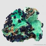 Azurite rosettes on Malachite