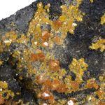 Stolzite with Wulfenite