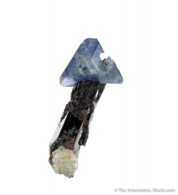 Benitoite on Neptunite
