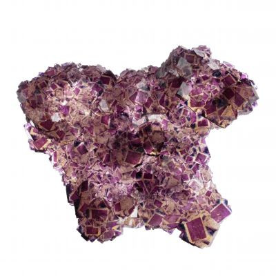 Polish Prodigy Pocket Fluorites
