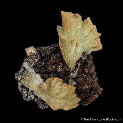 Paravauxite (Type Locality)