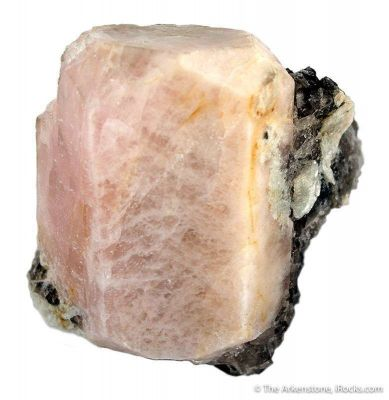 Beryl Var Morganite on Quartz and Muscovite